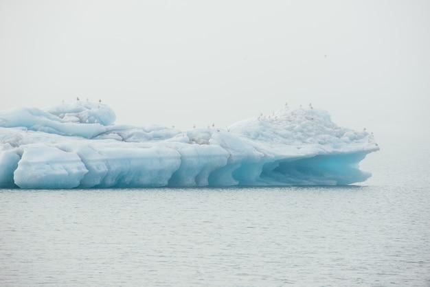 Islandzka laguna lodowa