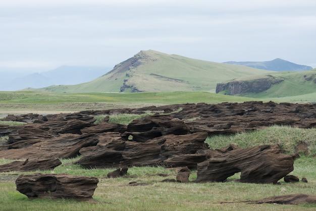 Islandzki krajobraz z stonowanymi kolorami i skałami