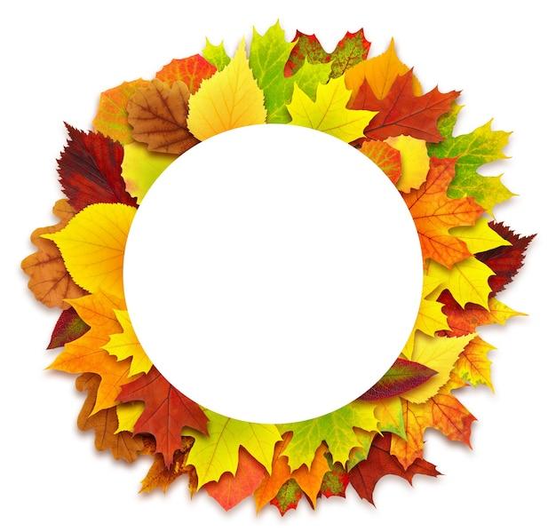 Izolowany element projektu. okrągłe jesienne liście granicy na białym tle na białej powierzchni