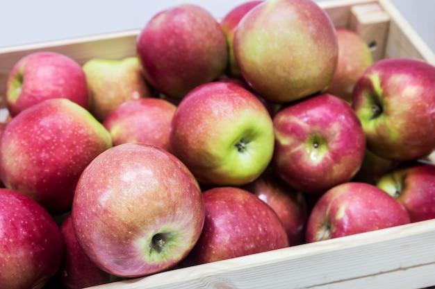 Jabłka owocowe w drewnianym pudełku. zbiór dojrzałych jabłek