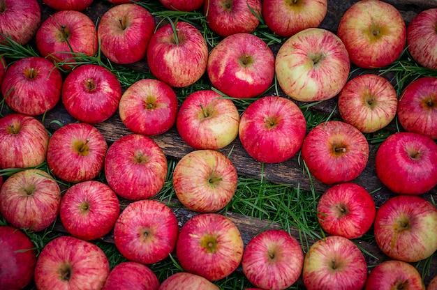 Jabłka w starej drewnianej skrzynce