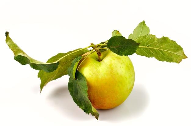 Jabłko z zielonymi listkami z drzewa na białym tle