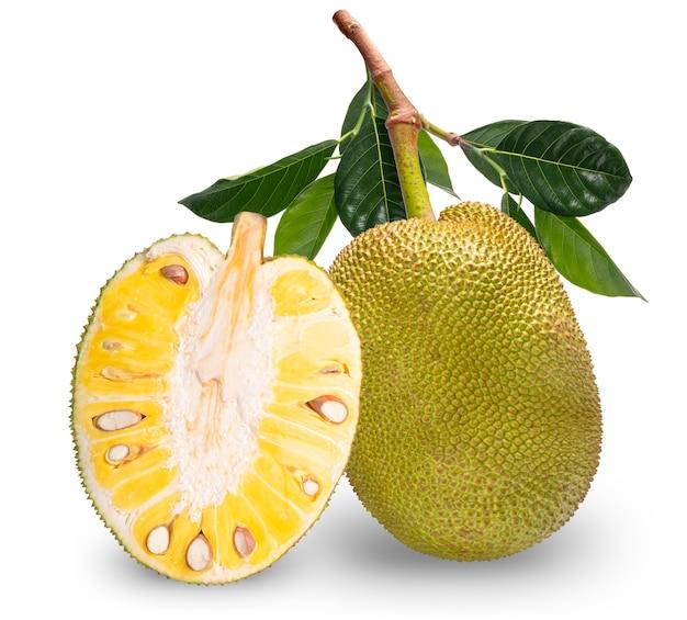 Jackfruit na białym tle, fresh jack, owoce na białym tle ze ścieżką przycinającą.