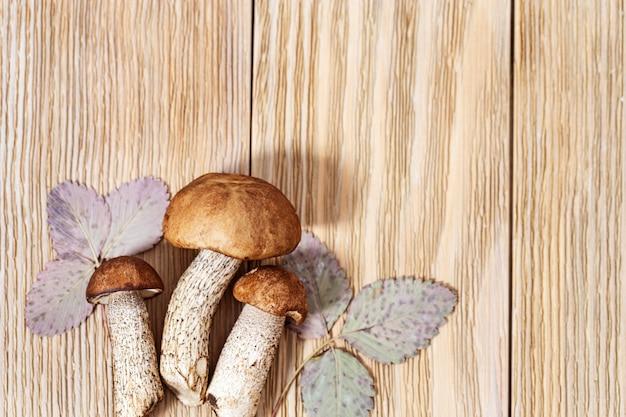 Jadalne grzyby cep (leccinum) z bliska na drewnianym rustykalnym z miejsca na kopię.