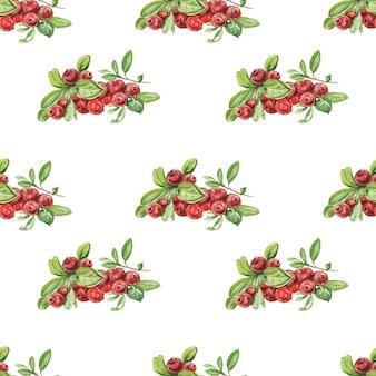 Jagody borówki brusznicy.