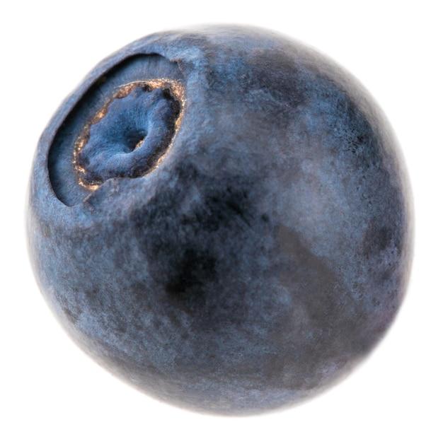 Jagody na białym tle. jeden świeży owoc borówki na białym tle.