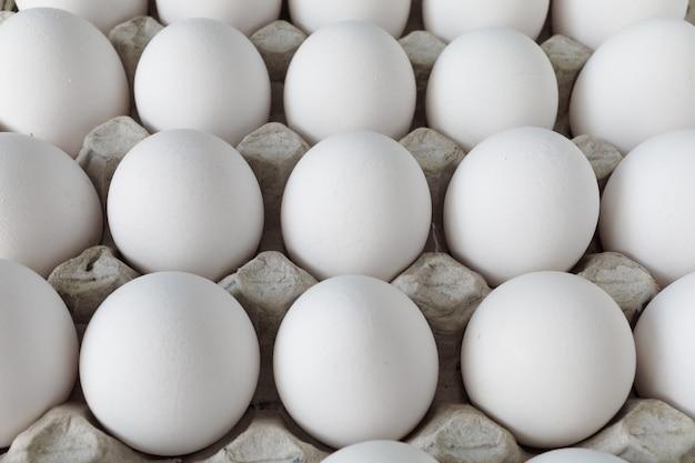 Jaja kurze białe w kartonie