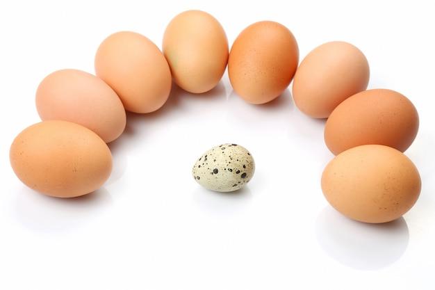 Jaja kurze kurczak wokół jajka przepiórczego na białym tle
