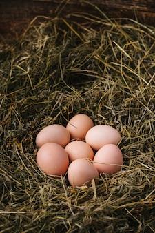 Jaja kurze w gnieździe. koncepcja żywności ekologicznej.