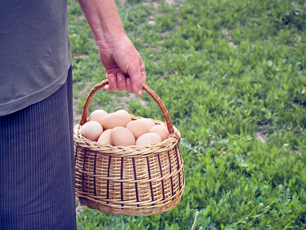 Jaja kurze w koszu.