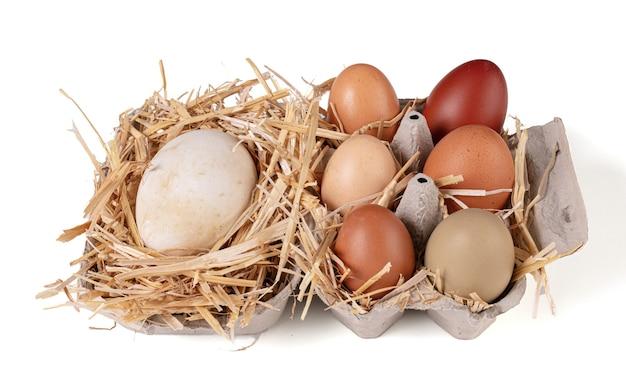 Jaja o różnych rozmiarach i kolorach ze słomką na białym na białym tle