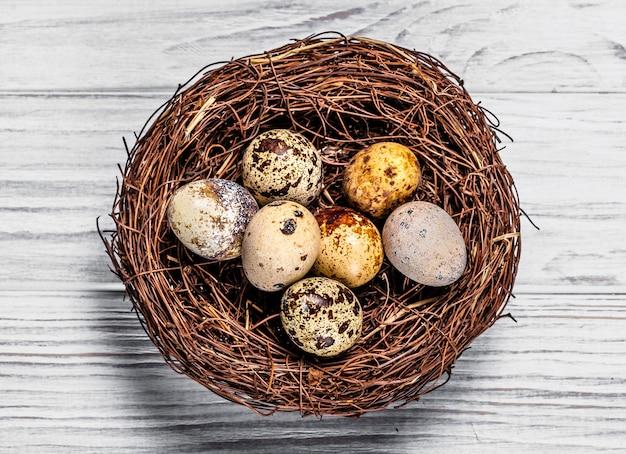 Jaja przepiórcze, cętkowane, brązowe plamki.