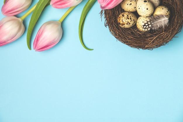 Jaja przepiórcze w gnieździe ptaka z piór i różowe tulipany na pastelowym niebieskim tle