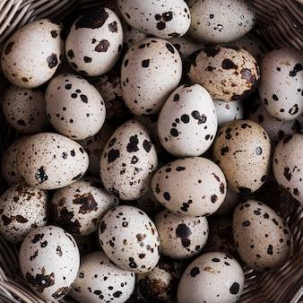 Jaja przepiórcze z bliska