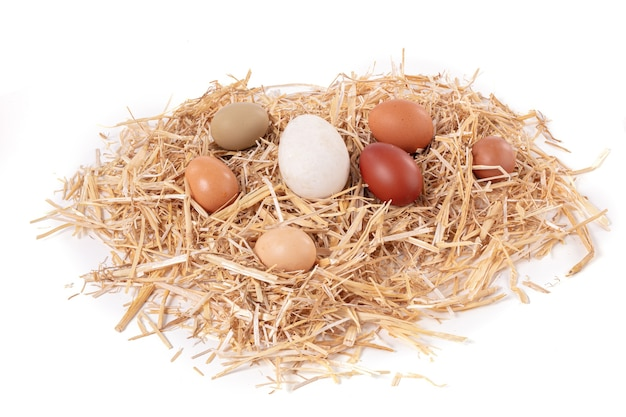 Jaja różnej wielkości i koloru ze słomką na białej powierzchni