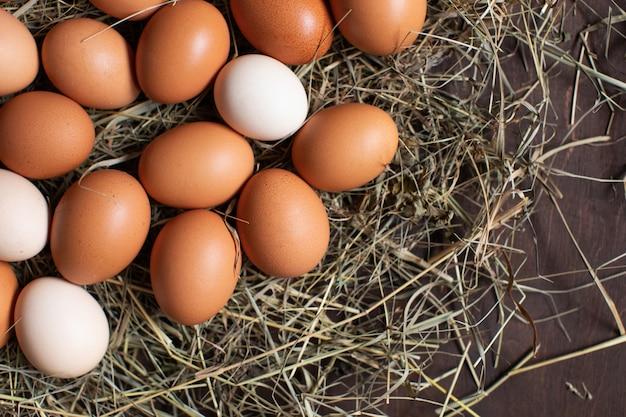 Jajka kurze w gnieździe siana.