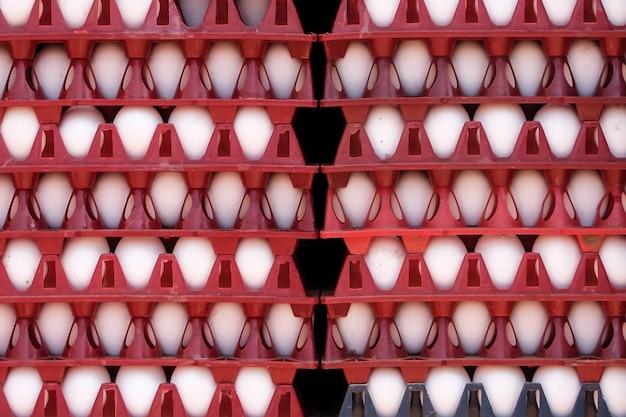 Jajka na sprzedaż