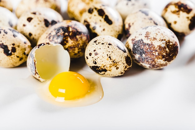 Jajka odizolowywający na biel powierzchni