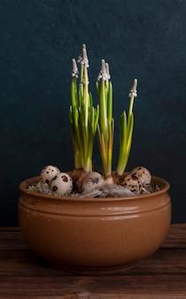 Jajka przepiórcze w misce z kwiatami muscari