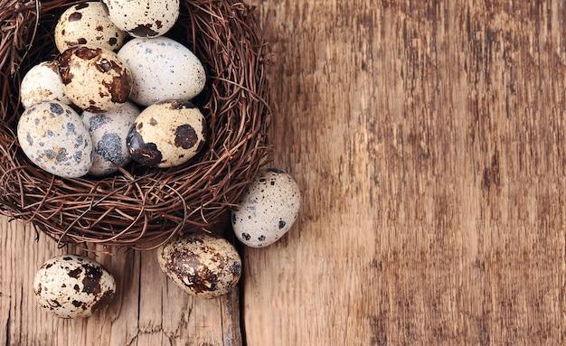 Jajka w gnieździe na beżowym tle. widok z góry jaja przepiórcze. skopiuj miejsce.