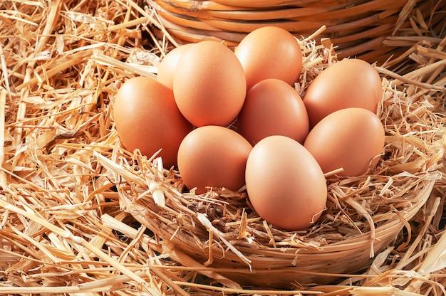 Jajka w koszyku słomy