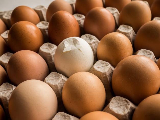 Jajka w tekturowej tacy, jedna szczelina różni się od reszty