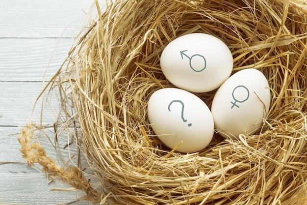 Jajka z symbolami płci i znakiem zapytania.
