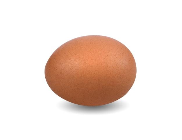 Jajko kura na białym tle