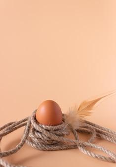 Jajko kurze na linie