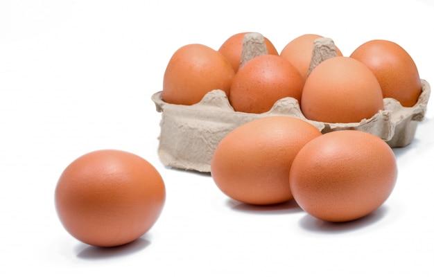 Jajko w papierowym pudełku odizolowywającym. jajka w kartonie.
