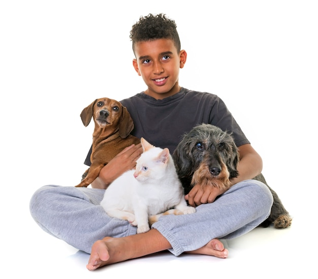 Jamniki, kotek i chłopiec