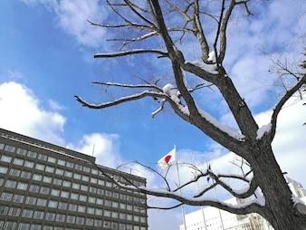 Japońska flaga państowowa latanie z popielatym budynkiem i zima błękitem