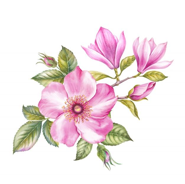 Japońska ilustracja botaniczna.