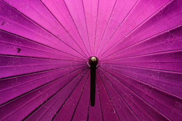 Japoński parasol z wzorem sakury.