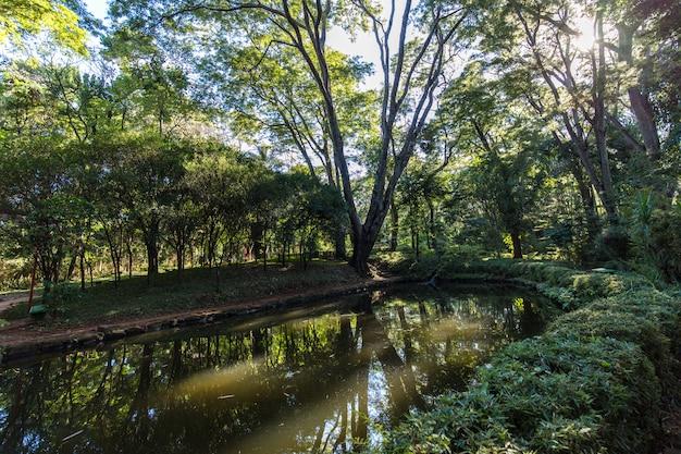 Japońskie ogrody w miejskim zoo ribeirao preto fabio barreto. stan sao paulo.