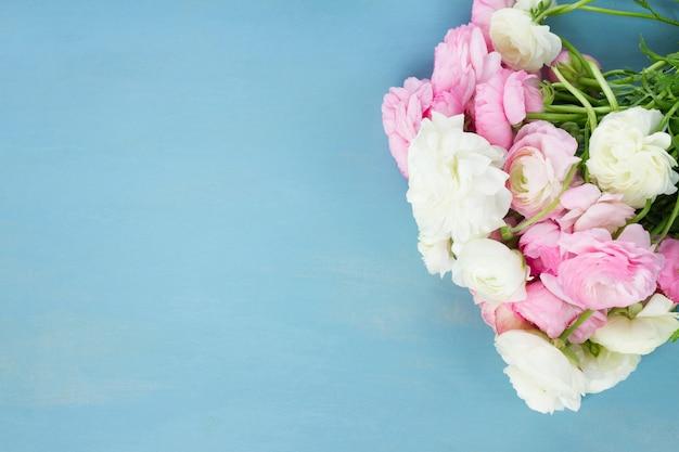 Jaskier różowe i białe kwiaty kwitnące na niebieskim tle drewnianych