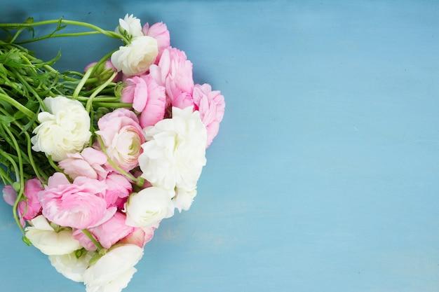 Jaskier różowy i biały kwitnący świeże kwiaty na niebieskim tle drewnianych