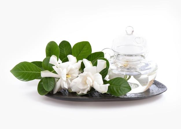 Jaśmin do kąpieli kwiat cape na białym tle.