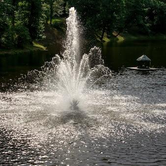 Jasna fontanna światła w jeziorze na tle drzew