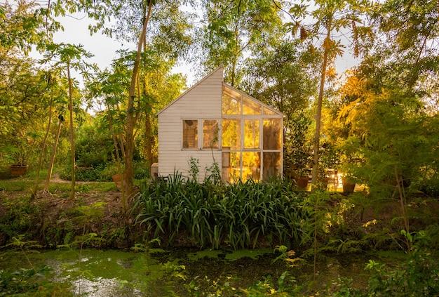 Jasna i przestronna oranżeria w ogrodzie w ogrodzie wieczorem ma światło słoneczne