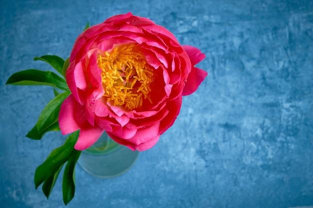 Jasna różowa piwonia w wazonie.