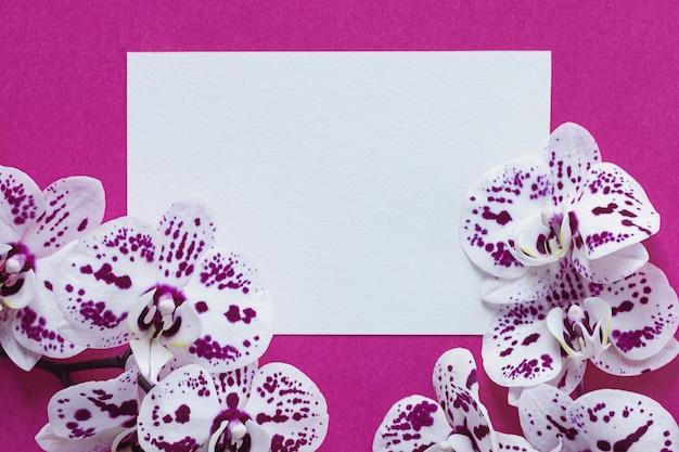 Jasna różowo-biała ramka makiety z kwiatami orchidei
