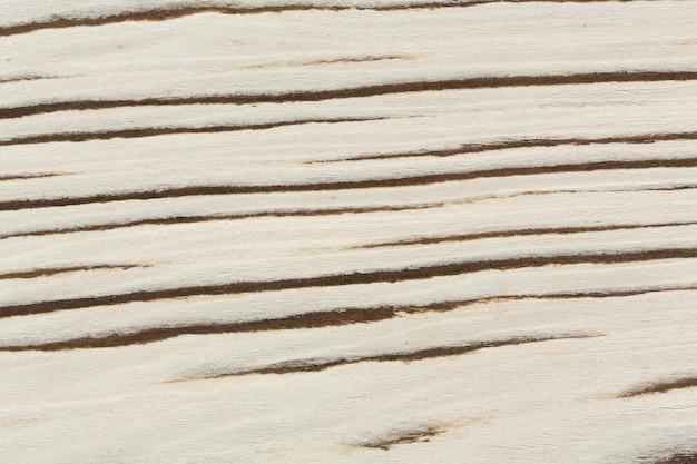 Jasna unikalna struktura drewna. zbliżenie naturalnego tła. niezwykle wysoka rozdzielczość zdjęcia.