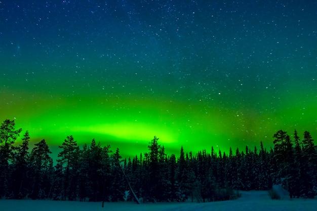 Jasna zorza polarna na rozgwieżdżonym niebie
