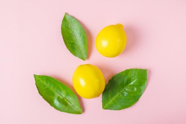 Jasne dojrzałe soczyste cytryny i liście drzewa cytrynowego na pastelowym różowym tle.