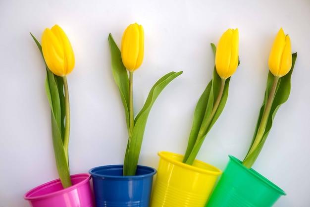 Jasne i kolorowe letnie tło płaskie leżało z żółtymi kwiatami tulipanów
