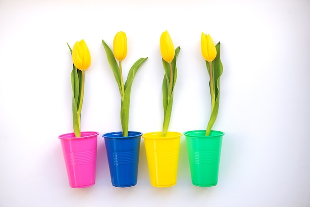 Jasne i kolorowe letnie tło płaskie leżało z żółtymi tulipanami na białym tle