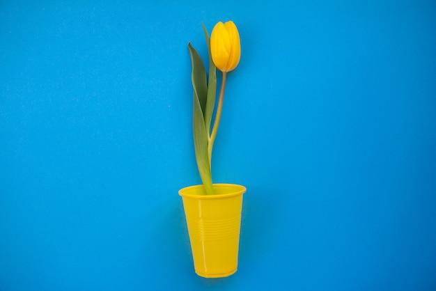 Jasne i kolorowe letnie tło płaskie leżało z żółtymi tulipanami na niebieskim tle
