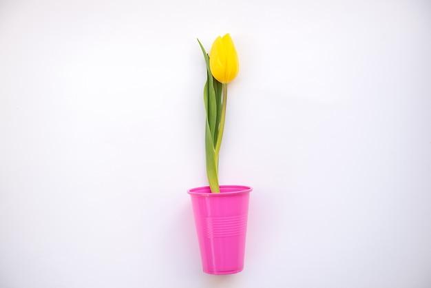 Jasne i kolorowe letnie tło płaskie leżało z żółtymi tulipanami w fioletowym plastikowym szkle