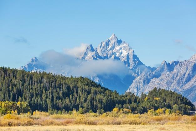 Jasne kolory jesieni w grand teton national park, wyoming, usa